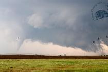 4_tornados