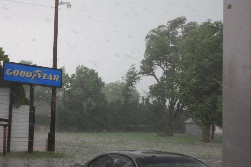 hail tearing up a tree