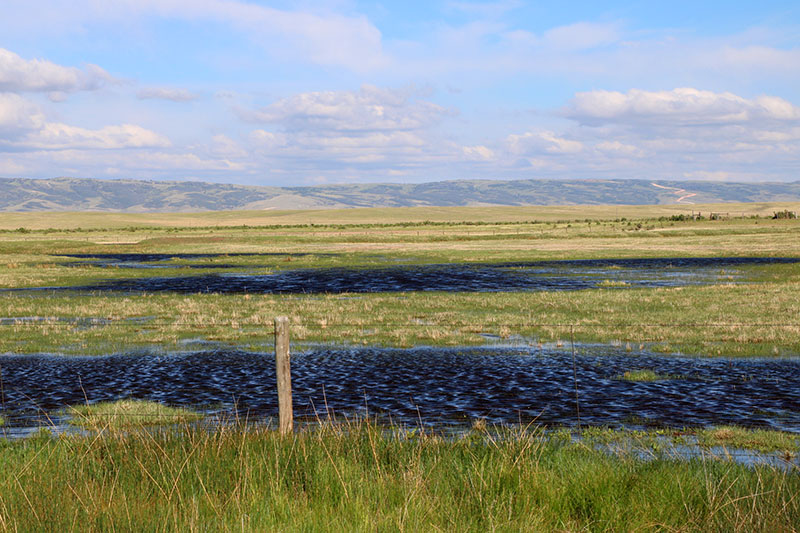 wyoming flooded fields
