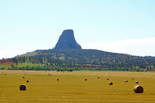 devils tower field