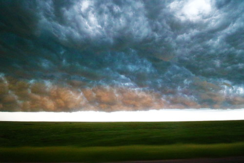 whales mouth storm