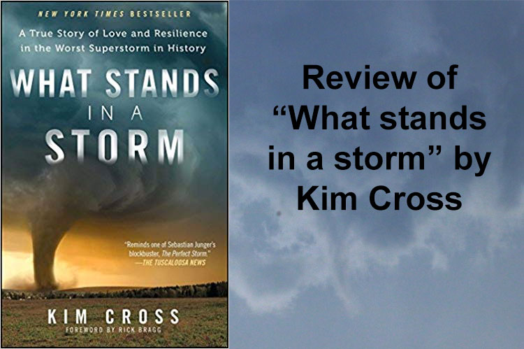 review what stands in a storm kim cross